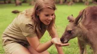 Welcome to the Sunshine Coast, home of Bindi Irwin and Australia Zoo!