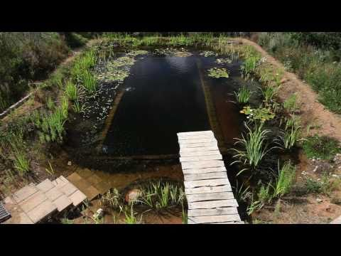 Natural Pools - Organic Pools selfbuild