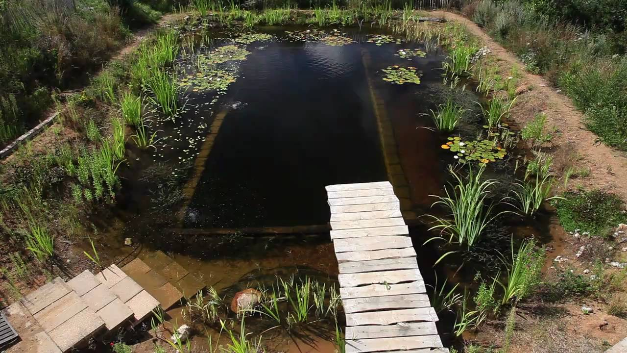 Natural Pools - Organic Pools selfbuild