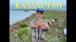 Ловили карпа а поймали Рыбалка в Казахстане на оз Узынколь