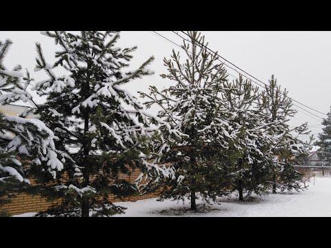 3 день в Перми. Гайва. Ежедневный влог | Aleks Egorov