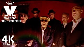 Madness - Drip Fed Fred