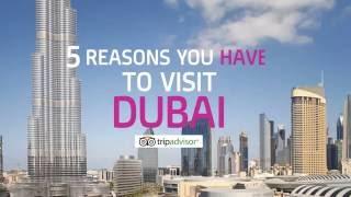 5 Reasons You Have to Visit Dubai