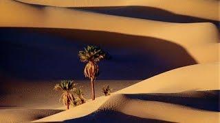 Sahara Libio, Agua del Desierto (documental completo) - Los Secretos de la Naturaleza