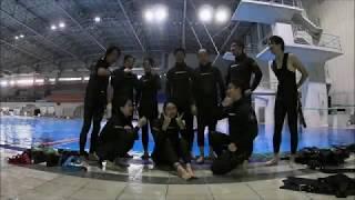 프리다이빙(FREEDIVING) 체험 : 삼성디스플레이