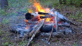 Как пожарить шашлык и не сжечь лес в Новосибирске