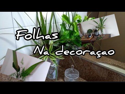 DECORAÇÃO COM PLANTAS, ARRANJOS COM FOLHAGENS Colab: Vilglenia Godoy