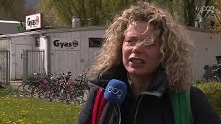 Politie onderzoekt duivendoders bij Gyas: 'Betrokken leden krijgen gepaste straf'