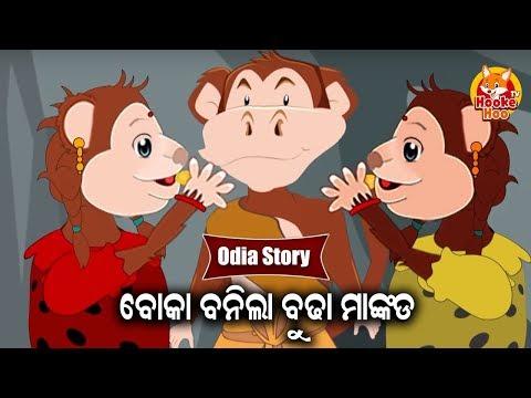 Boka Banila Budha Mankada ବୋକା ବନିଲା ବୁଢା ମାଙ୍କଡ | Odia Moral Story For Kids | HookeHoo TV