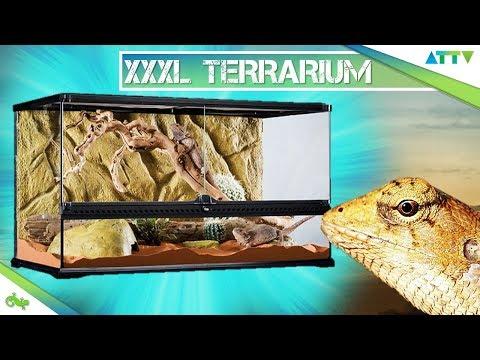 💢Das große EXOTERRA Wüstenterrarium 90x45x60cm - Unboxing