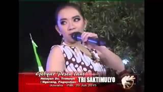 Kumpulan Lagu Dangdut Koplo Jawa Tengah Terbaru 2016
