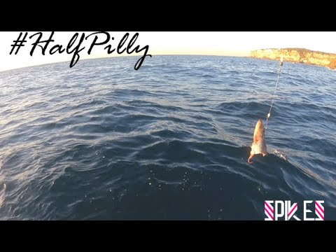 Sydney Offshore Reef Fishing - Part 2 #Halfpilly Rig - Spikes Fishing