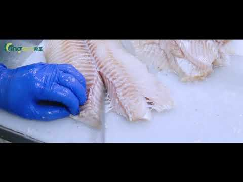 Fish Fillet Processing Line   Kingsun Foods