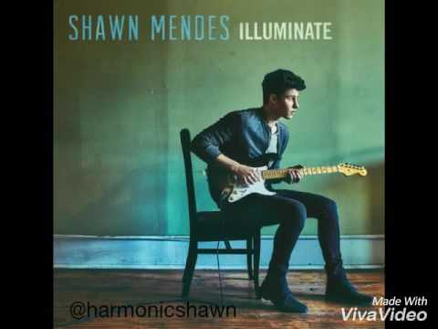 Shawn Mendes - Mercy (Audio)