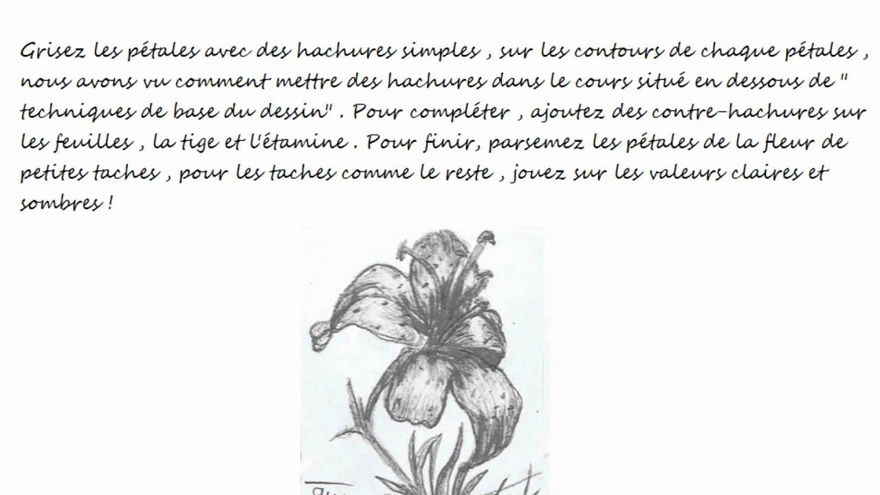 Comment dessiner une fleur de lis youtube - Photo de fleur a dessiner ...
