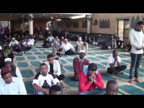 Muslims response to insensitive times - Anwaar Shammi