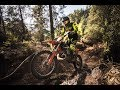 FOREST RACE - Red Bull Sea to Sky 2017 | Wade Young dominates the Forest Race!