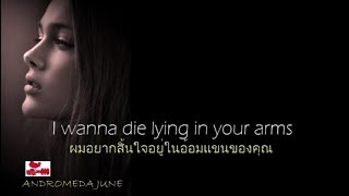 Baixar เพลงสากลแปลไทย I Wanna Grow Old With You - Westlife (Lyrics & Thai subtitle)