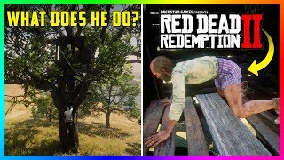 What Happens If You Get Inside Of The Devil's Treehouse In Red Dead Redemption 2? (RDR2)