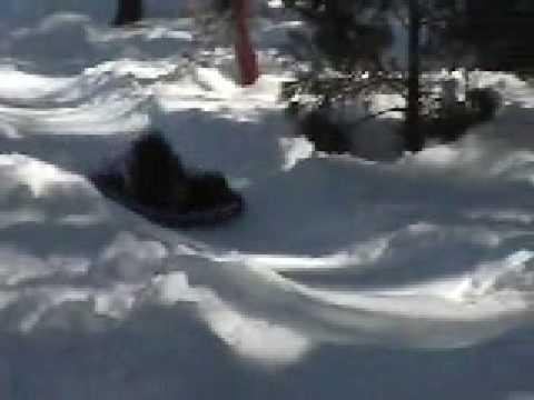 sledding in Idyllwild