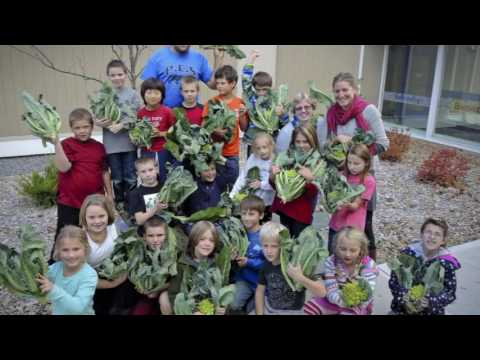 Local Non Profit Striving to Bolster Healthy Food Distribution - YCN News 7.6.16