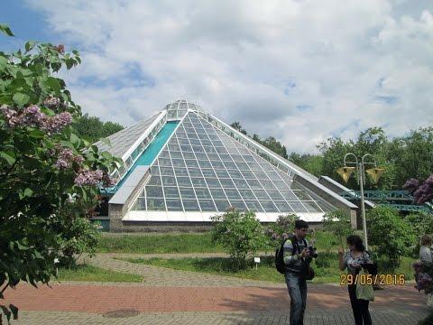 Оранжерея Ботанического сада Минска