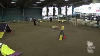 Carly Sun Novice Standard Staffordshire Bull Terrier Club Of America Akc Dec 2012