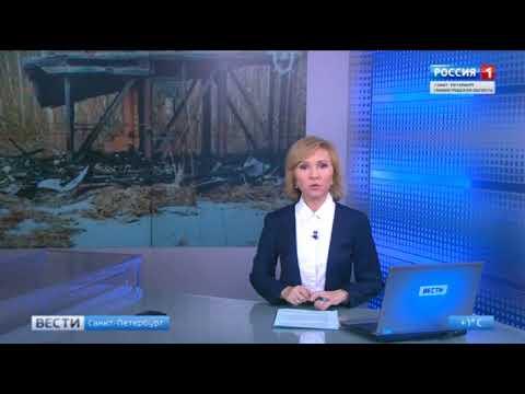 В Ленинградской области девочки-подростки в прямом эфире сожгли чужой дом