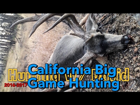 2016-2017 Big Game Success | Hmong California Hunter | Tua Mos Lwj | Yos Hav Zoov | Hunting W David