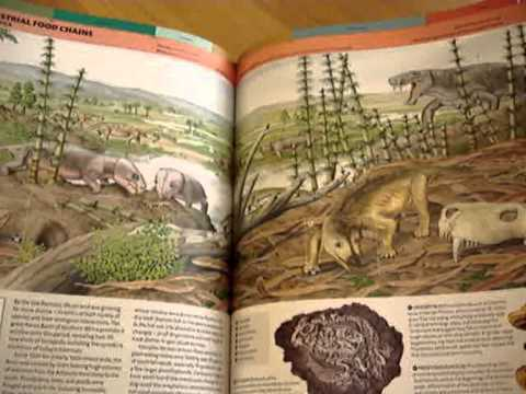 EVOLUTION: The Story of Life - YouTube