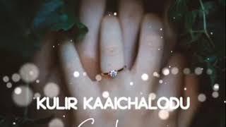 Adai Mazhai Varum Athil Nanaivome Tamil Lyrical Video Song