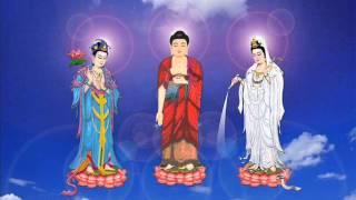 Phật ở trong tâm - Ni Sư Thích Nữ Hạnh Chiếu
