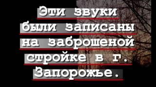 """Призраки на """"Чернобыле"""""""