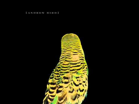 Andrew Bird - Armchair Apocrypha (Full Album)