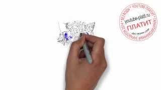 Нарисованный карандашом кот  Как нарисовать черного голубоглазого кота поэтапно