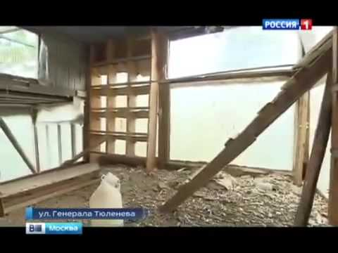Новости России сегодня  Ложь депутата, Самые последние новости Москвы сегодня