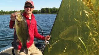 Flipping & Pitching Northern Bass in Heavy Grass
