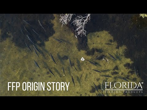 Florida Fishing Products Origin Story