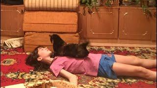 Упала в обморок! Реакция кошки Мани!