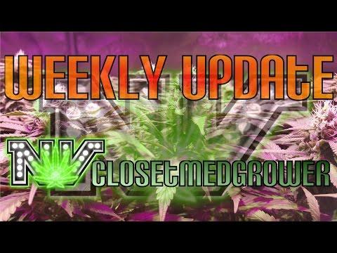 Weekly Update 5/24/2016