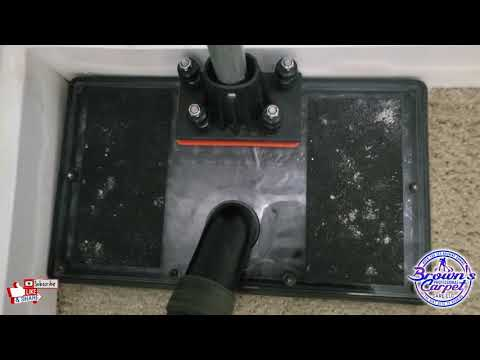 Carpet Cleaning Vlog Episode 49: Flood Water Extraction ONLY| Water Claw Tool