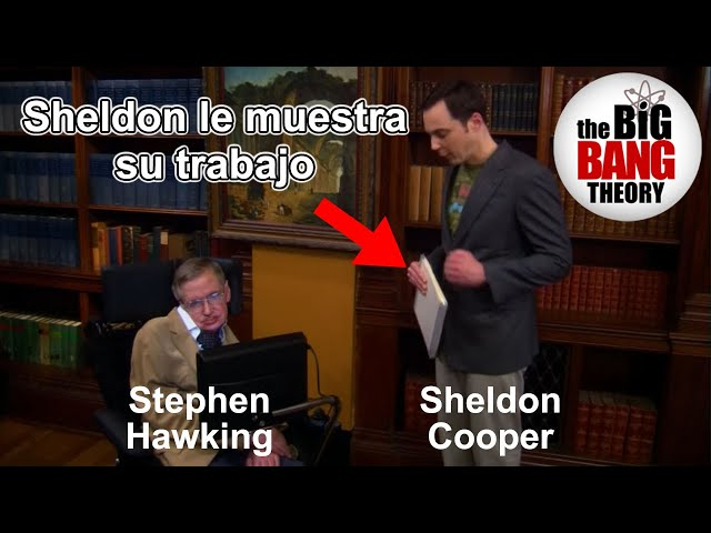 El entrañable cameo de Stephen Hawking en 'Big Bang Theory'