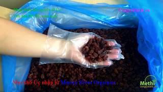 Bán nho khô úc giá rẻ hcm của Murray River Organics