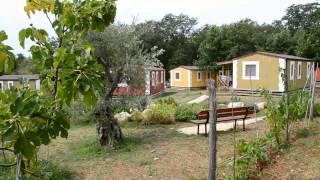 Camping Mareda - Novigrad - www.avtokampi.si