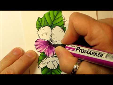 How to Colour with Promarkers..floral