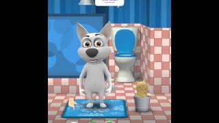 Говорящая собака - Кормим и купаем собачку - My Tilking Dog - Android GamePlay