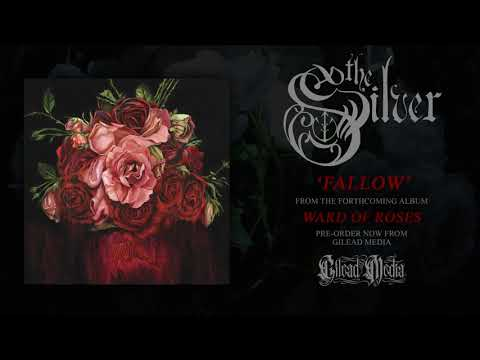 The Silver 'Fallow' (Official audio)