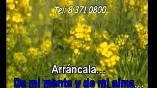 HAZME OLVIDARLA Alvaro Torres Power Karaoke flv