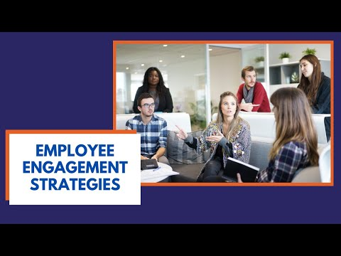 Employee Engagement Strategies You Can Use (4 Strategies)