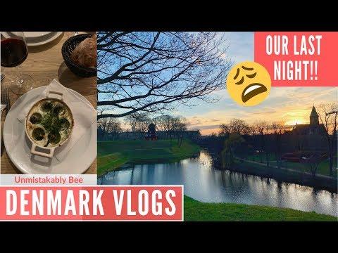 WANDERING COPENHAGEN | FANCY DINNER | ROOFTOP BAR | DENMARK VLOGS 2019